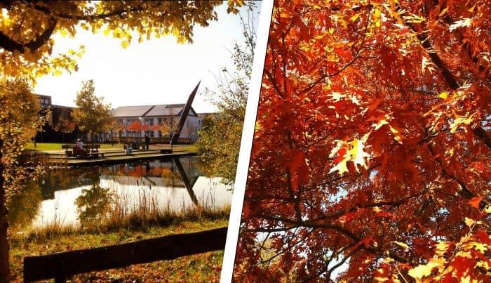Herbst am Umwelt-Campus 1