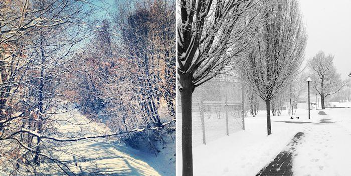 winter im frühling