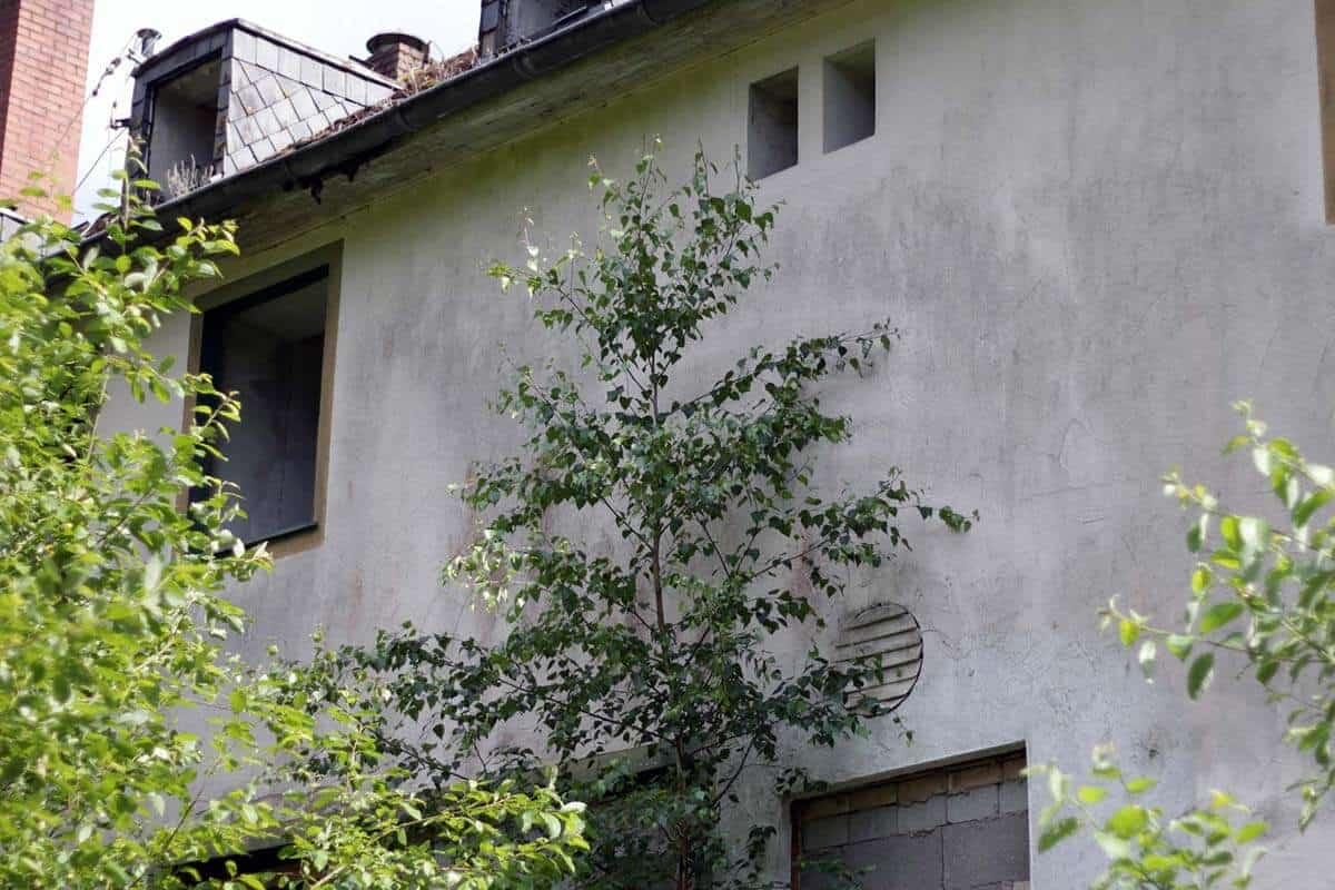 Lost place: Das Spukhotel