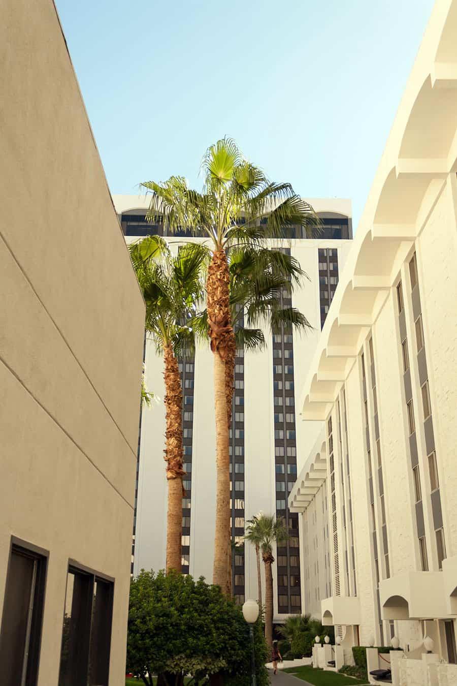 Las Vegas Hotel Riveria