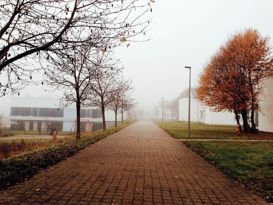 Herbst am Campus Richtung Kommunikationsgebäude