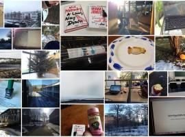 pmdd17 Collage