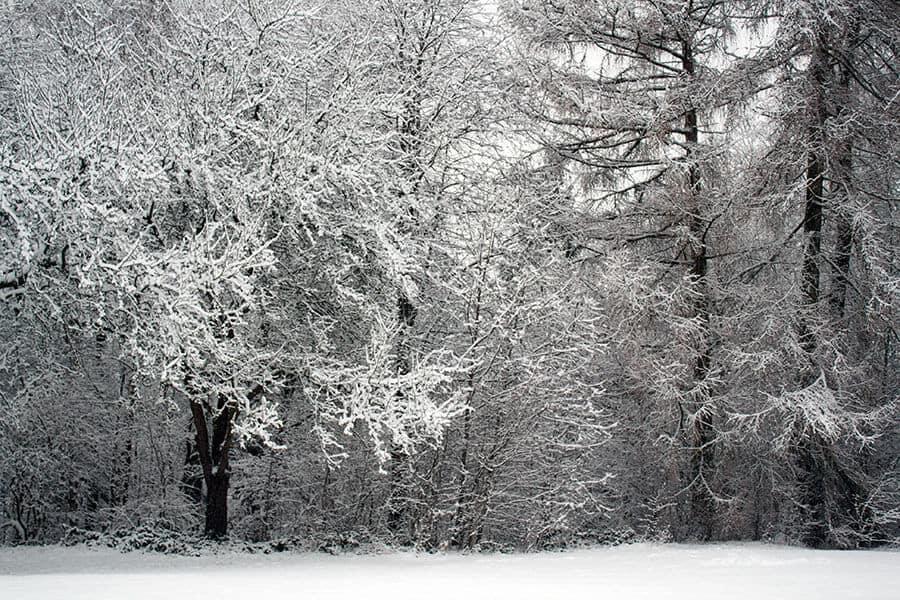 Winterwonderlandhunsrueck2