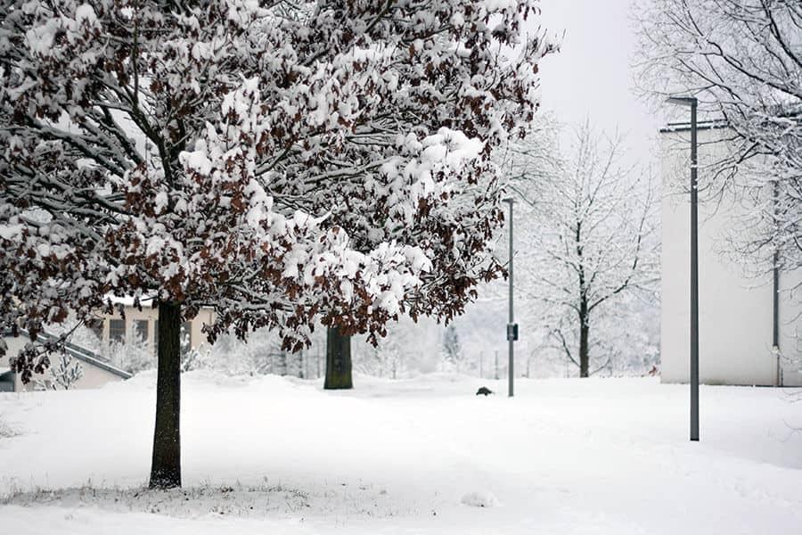 Winterwonderlandhunsrueck8