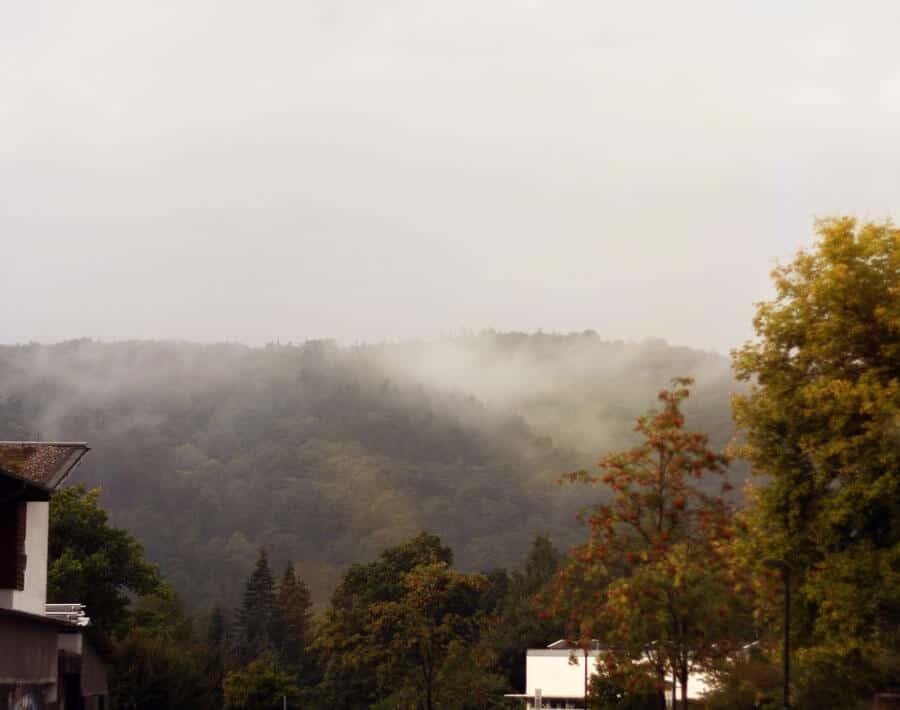.. am Nebel vorbei..