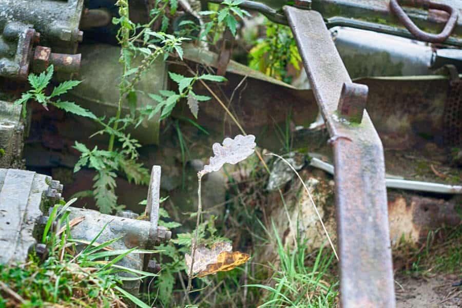 lost place: alter Panzer im See von der Natur erorbert im Brander Wald