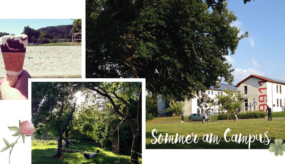Sommer am Umwelt-Campus
