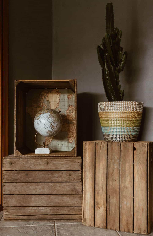 Globus und Kaktus auf Holzkiste