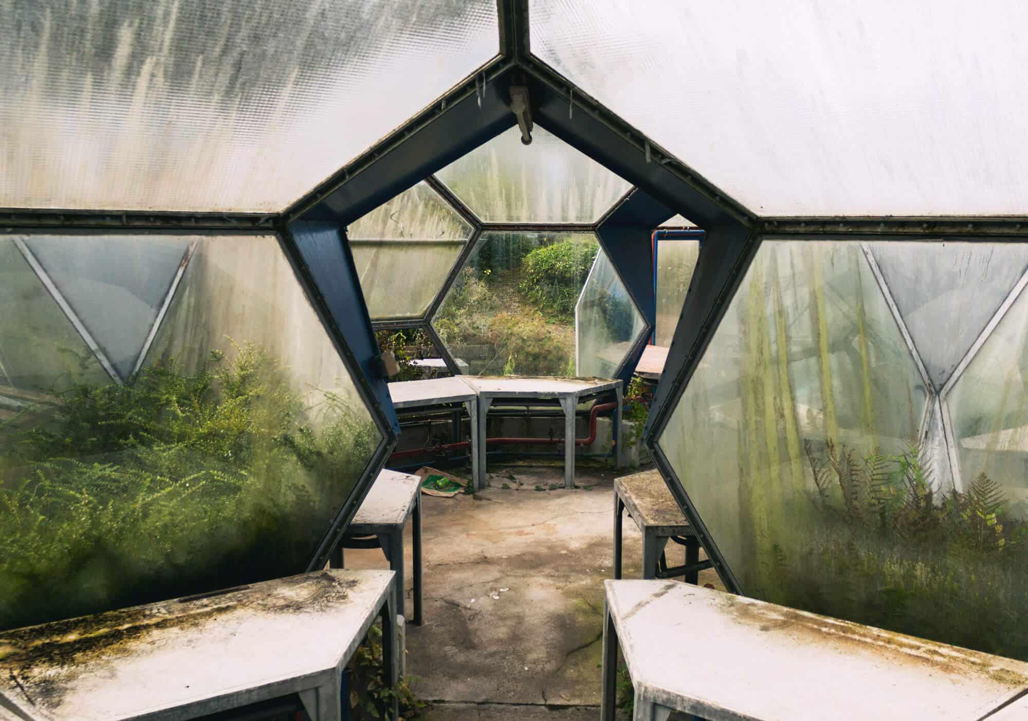 Kuppelgewächshaus von innen